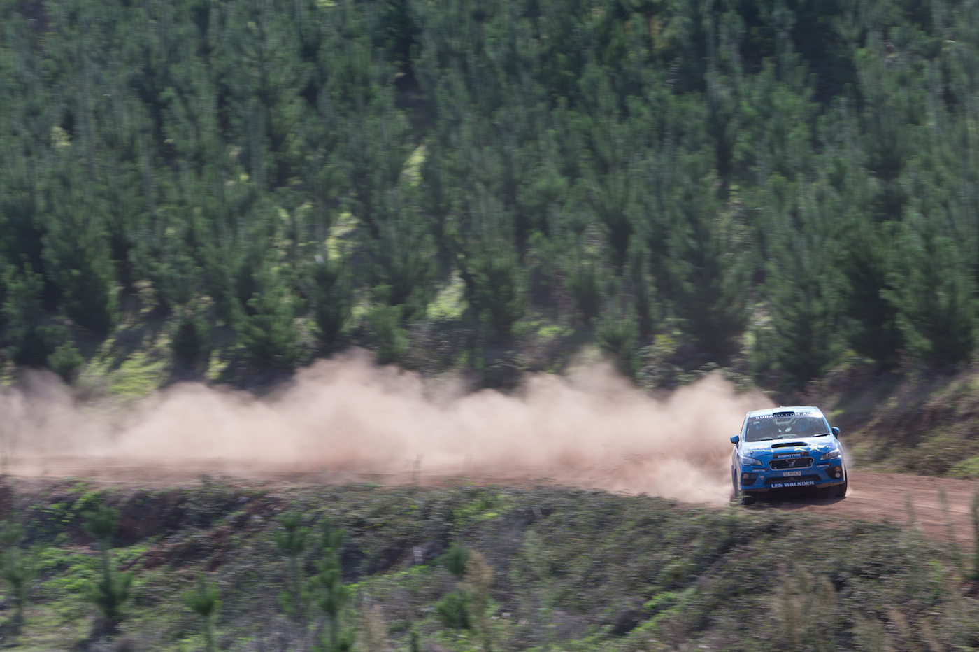 Subaru driver Molly Taylor with co-driver Bill Hayes in action at the 2016 Forest Rally.